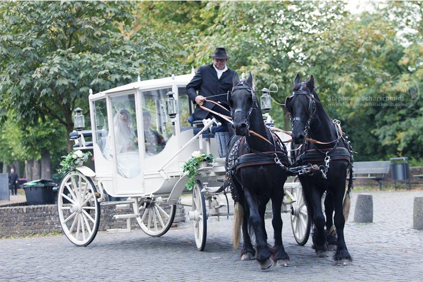 Hochzeitsfotos Brautpaar in der Pferdekutsche auf dem Weg zum Hotel Schloss Friedestrom in Zons