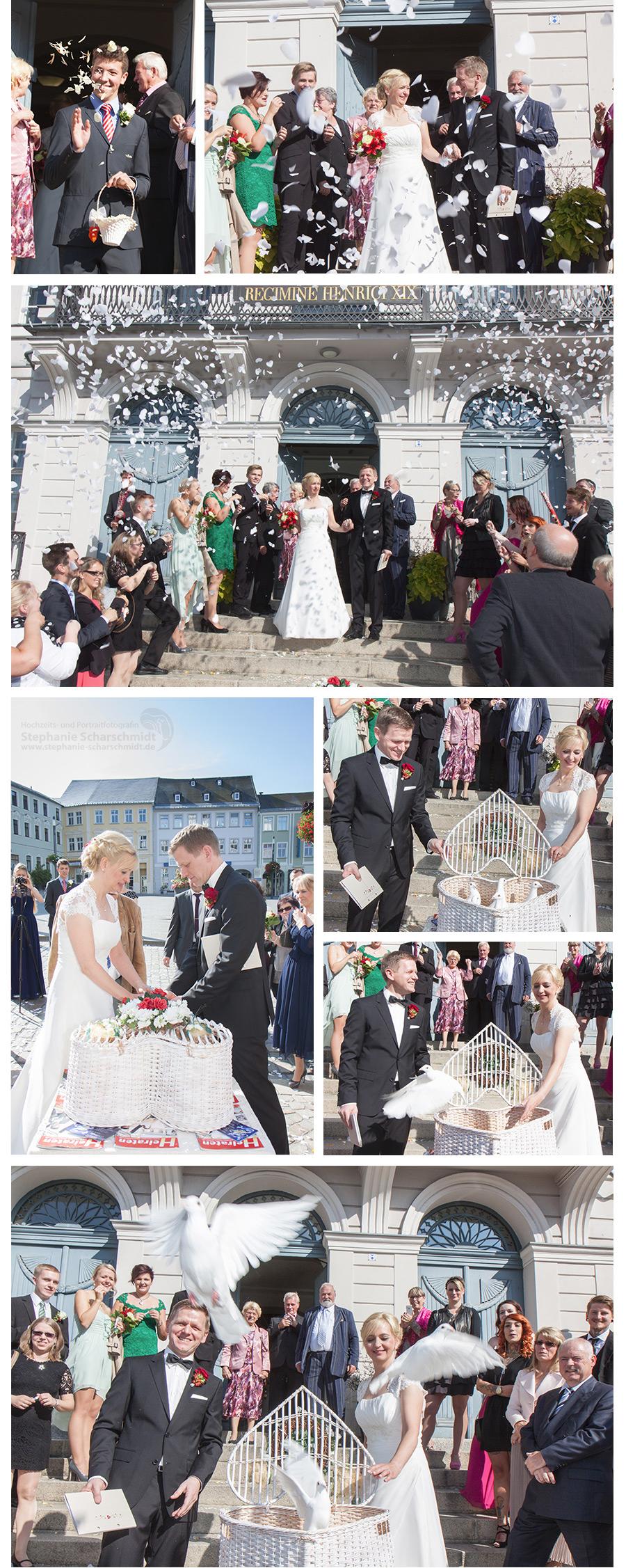 3. Hochzeitsbrauch weisse Tauben Steigen Lassen- Landkreis Greiz - Hochzeitsfotograf Bio-Seehotel Zeulenroda- Hochzeits- und Portraitfotografin Stephanie Scharschmidt - Hochzeitsfotograf Bio-Seehotel Zeulenroda –