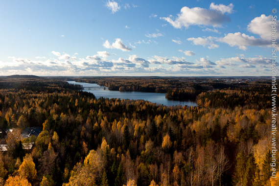 image-30487: Finland most forested country in europe