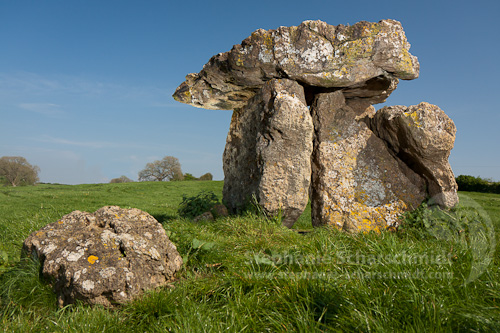 image-40381-b: stone dolmen in the Vale of Glamorgan ( St Lythans / Vale of Glamorgan – Wales / Great Britain) 23.4.2011 15:37