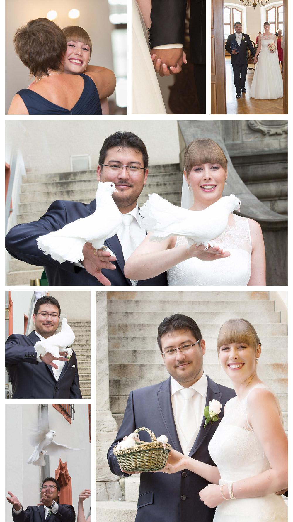 Hochzeitstauben in Plauen