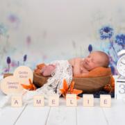 Baby Familie Neugeborene Geburt Newbornfotografie Neugeborene Babys Babybauch Schwangerschaft Newborn Fotograf Plauen Stephanie Scharschmidt
