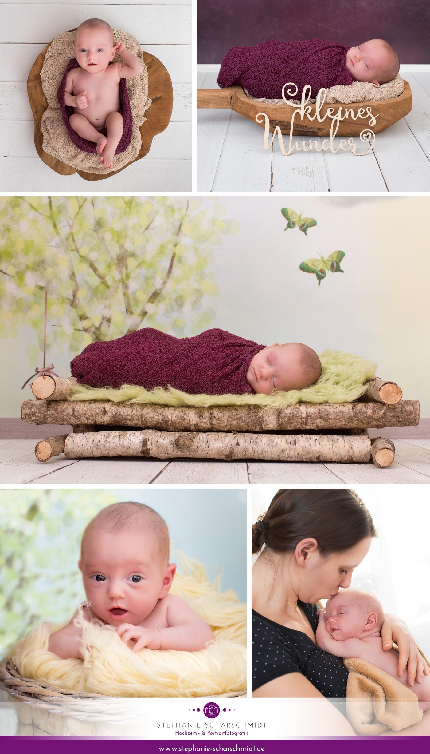 babyshooting Plauen und Zwickau Neugeborenenfotograf Stephanie Scharschmidt