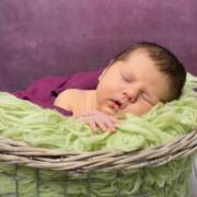 Neugeborenenfotos Plauen - Fotografin Stephanie Scharschmidt