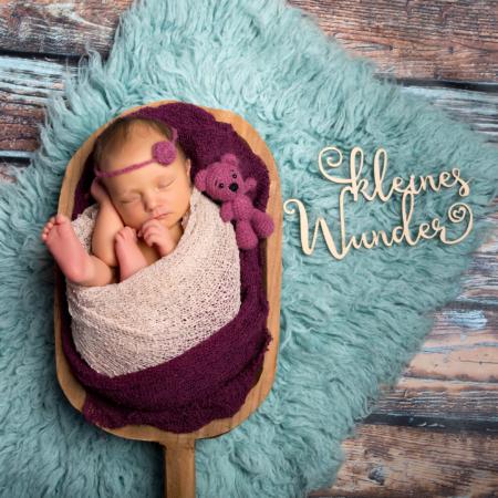 Baby Fotograf Plauen Stephanie-Scharschmidt (291135-b )